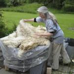 Sorting fleece